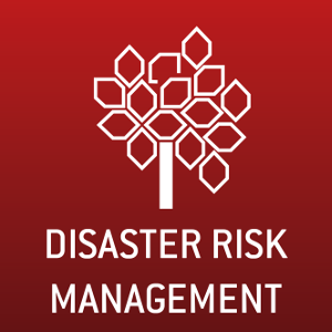 Committee on Disaster Risk Management CDRM