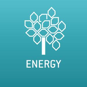 WFEO Committee on Energy