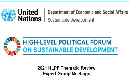 UN Expert Group Meeting for 2021 HLPF