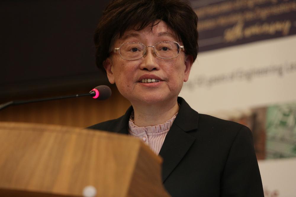 Prof. Wu Qidi, Director UNESCO Category 2 centre, ICEE, Tsinghua University, China