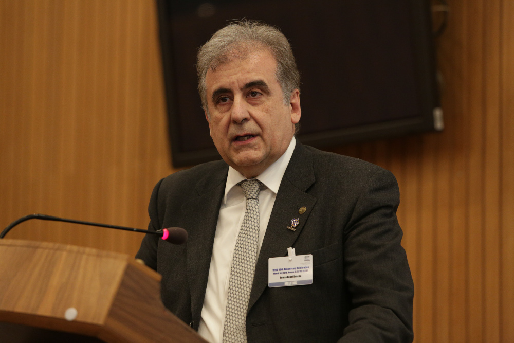 Mr. Tomas Sancho, representing WCCE, an international member of WFEO and the national engineering<br />institution of Spain (IIE) and Portugal (OdE), both national members of WFEO