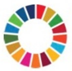 Report on WFEO side event of HLPF 2020