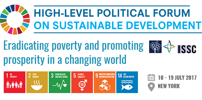 WFEO participation in the High-Level Political Forum on Sustainable Development (HLPF) 2017