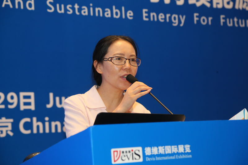Prof. Chen Xingying from Hohai University