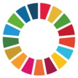 The UN SDGs and WFEO's strategic approach to advancing these – Dr Marlene Kanga interview by Research Features