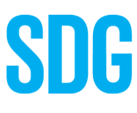 Report on UN SDG Summit 2019