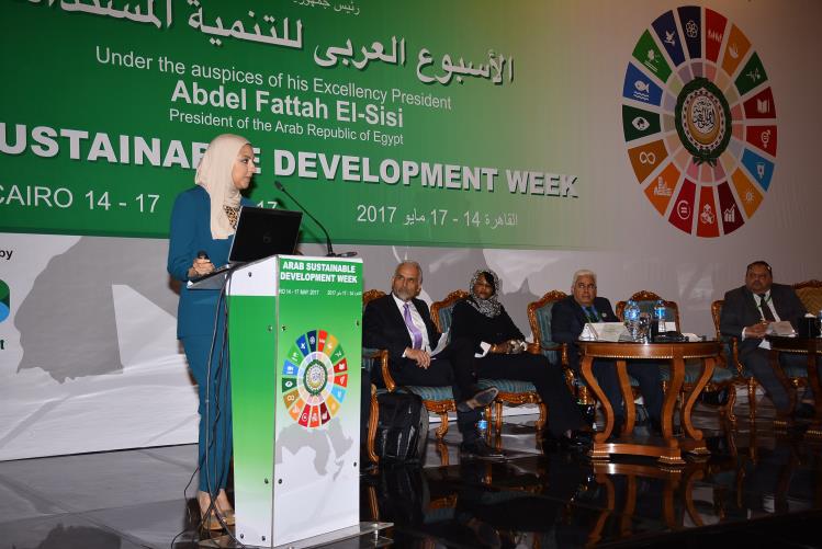 sdg_arab_week2