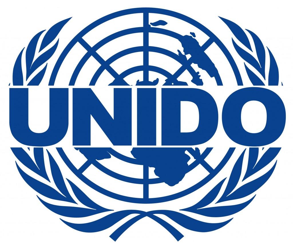 WFEO and UNIDO