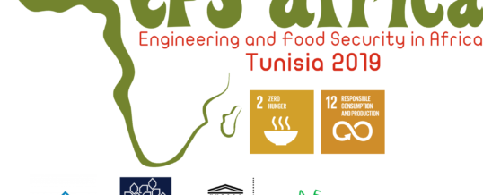 WFEO report on the International Conference on Engineering and Food Security in Africa