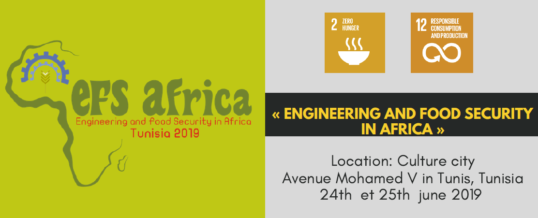 WFEO International Conference on Engineering and food Security in Africa