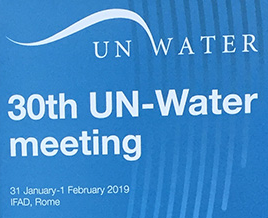 Report of the 30th UN Water meeting