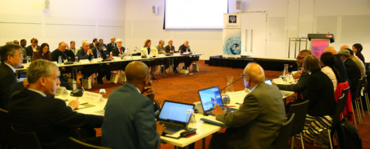 WFEO Virtual Executive Committee meetings