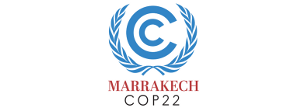 COP 22 Report – Outcomes of the U.N. Climate Change Conference