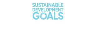 WFEO participation at the UN HLPF Forum 2019